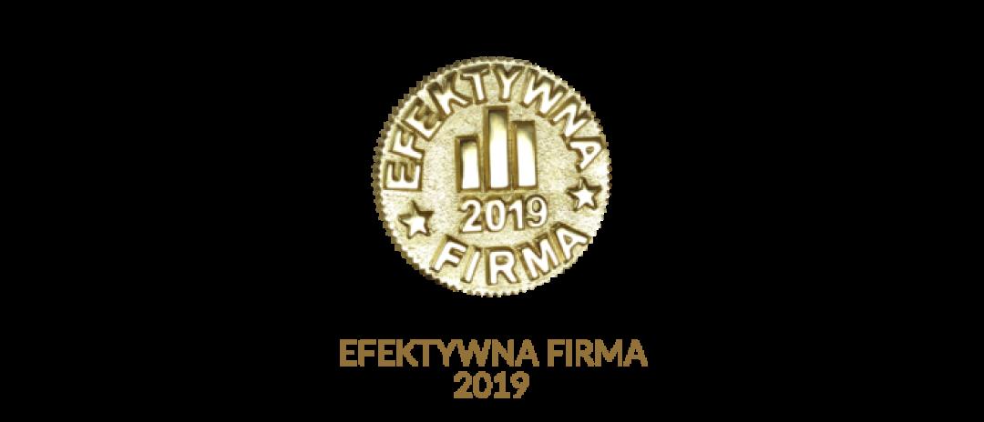 Logo Efektywna Firma